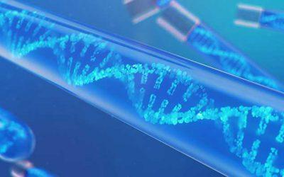 Nucleic acid staining – Dyes & Transilluminators