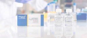 Polyplus Jetoptimus DNA Transfection Reagent